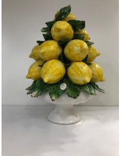 Big Lemon Tree Sorrento...